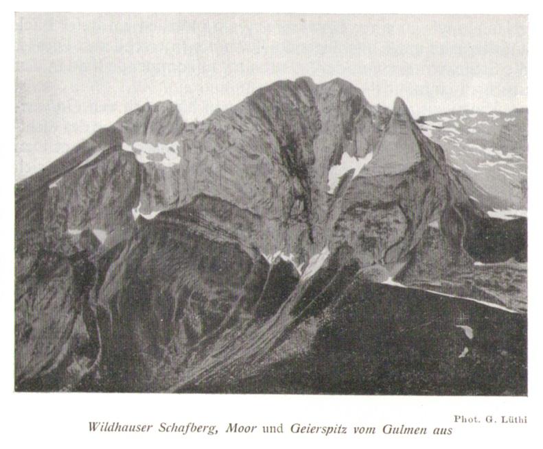 Wildhauser Schafberg08frueherp.jpg
